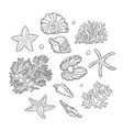 set sea shells stars corals and pearls vector image