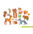 set with forest animals vector image vector image