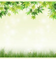 spring meadow with green leaves background vector image vector image