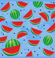 background pattern with watermelon and seeds vector image vector image
