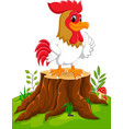 cartoon chicken rooster on tree stump vector image vector image