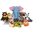 children with animals on isolated background vector image vector image