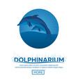 dolphinarium dolphin show banner ticket vector image vector image