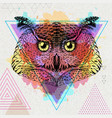 hipster bird owl on artistic polygon watercolor vector image