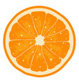 orange slice vector image vector image