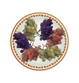 white plate full of grapes vector image