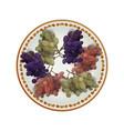 white plate full of grapes vector image