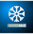 Winter Sale Theme With Snowflake on Blue vector image vector image