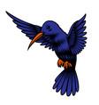 a a hummingbird vector image