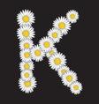 bele rade K resize vector image vector image