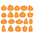 cartoon pumpkin different shapes and sizes vector image