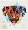 hipster animal dog on artistic polygon watercolor vector image
