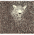 leopard skin and head background vector image vector image