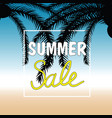 summer sale with palm in color design vector image vector image