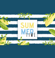 summer time invitation natural cartoon banner vector image vector image