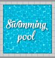creative of swimming pool top vector image