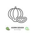 acorn squash icon vegetables logo thin line art vector image vector image