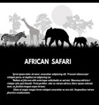 african safari poster vector image vector image