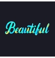 Beautiful hand written lettering Word for tee vector image