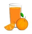 fresh orang juice vector image vector image