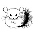 line art stylized chinchilla vector image vector image