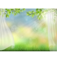 summer background with curtain vector image vector image