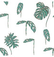 tropical leaves on white background vector image vector image