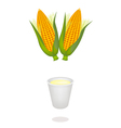 A Cup of Corn Juice and Fresh Sweet Corns vector image vector image