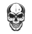vintage scary skull concept vector image