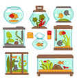 aquarium fish underwater life seaweed indoor vector image