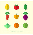 flat vegetarian icons vector image