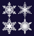 snowflakes holiday decorations vector image vector image