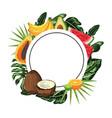 tropical fruit cartoon vector image vector image