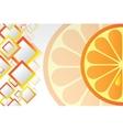Juicy orange background vector image