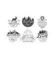 forest camp premium retro labels set camping club vector image vector image