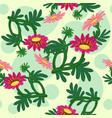 gazania flowers seamless pattern vector image