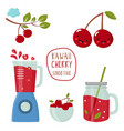 set funny kawaii cherry with a blender vector image