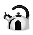 teapot and kettle set in a realistic style vector image vector image