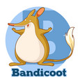 abc cartoon bandicoot vector image vector image