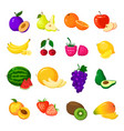 cartoon fresh fruits isolated icons on white vector image