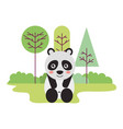 cute panda sitting in the outdoors vector image