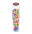 Different Colors of Chocolate Candies in Glass jar vector image vector image