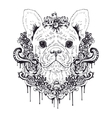 French bulldog graphic dog abstract vector image vector image
