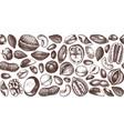 nuts design hand drawn pecan macadamia pine nuts vector image vector image