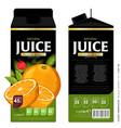 template packaging design orange juice vector image