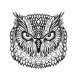Zentangle stylized eagle owl head Tribal sketch vector image vector image