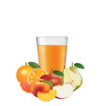 juice glass with fruits vector image vector image