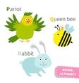 Letter P Q R Parrot Queen bee Rabbit Zoo alphabet vector image