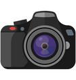 professional photo camera isolated on white vector image