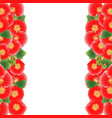 red alcea rosea border - hollyhocks vector image vector image